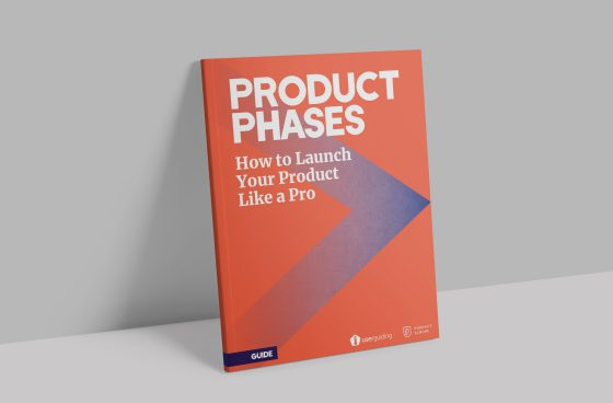 product phases guide