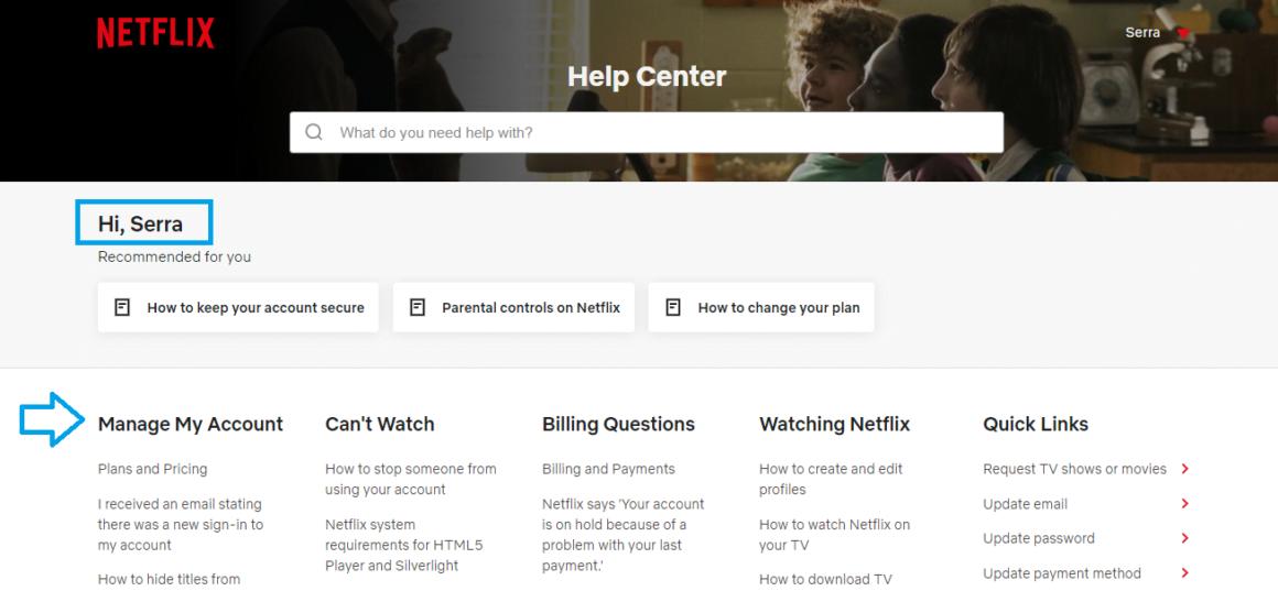 help center software examples netflix